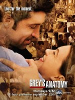 cartaz-greys-anatomy-s5